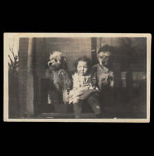 FUNNY SMIRK FACE GIRL w DOG FRIENDS on PORCH SWING ~ 1910s VINTAGE PHOTO
