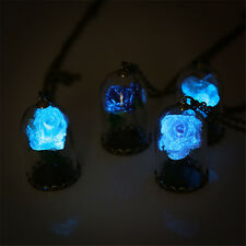 Beauty and the beast Glow in the Dark Rose Wishing Bottle Necklace Pendant