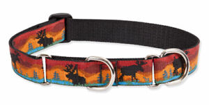 "Lupine 1"" Moose on the Loose 15-22"" Martingale Collar"