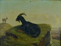 Tableau Ancien Animalier Chèvre Paysage Tyrol école Allemande 19 ème  A. Closs
