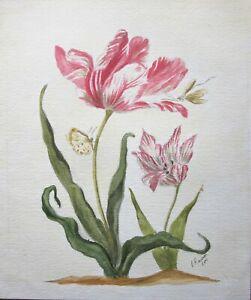 Feb 2000 Botanical Flower Tulip Insects Original Painting Watercolour P Rawson