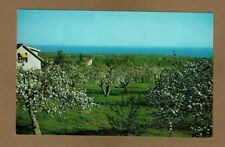 Bayfield,WI Wisconsin,Springhill Orchards, Apple Cider in Orchard Shop