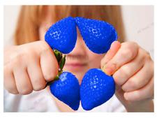 Sementes De 500 Pçs Azul Escalada Medronheiro Plantas Raras Frutas Casa Jardim Bonsai