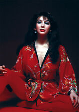 More details for kate bush sitting red new poster