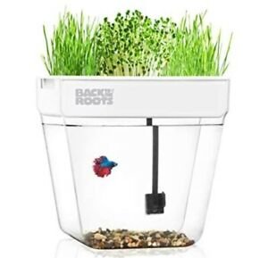 New! Back to the Roots Water Garden Mini Ecosystem Hydroponics Plus Aquarium