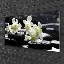 Wandbilder aus Plexiglas® 100x50 Acrylglasbild Blumen Steine Pflanzen
