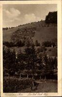 Wildemann Niedersachsen Innerstetal Harz ~1920/30 Panorama Zick Zack Weg Berge