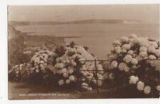Shanklin Hydrangea Time 1951 Postcard IOW 252a