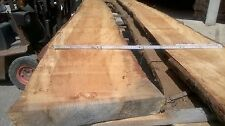 Kiefer Blockware Naturdielen 60 mm Breit: 25 - 40 cm Kieferholzbohlen Stammholz