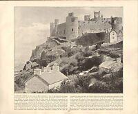 1894 Vittoriano Stampa ~ Harlech Castle Merionethshire ~ Forti ( Testo