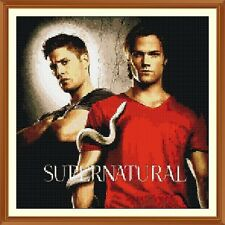 Supernatural Cross Stitch Chart x 12.0 x 12.0 Inches
