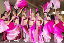 1 pair(2pcs) 1.5m hand painted pink fading belly dance silk fan veil