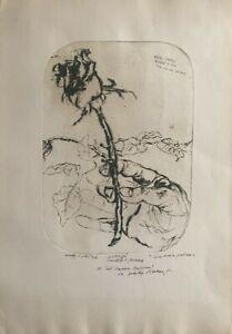 WALTER PIACESI incisione puntasecca Rosa del mio Giardino 1973 50x35 + cornice