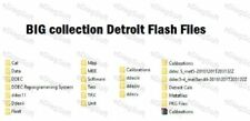 BIG collection Detroit Flash Files Collection of data base for Detroit
