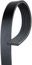 ACDelco Pro 6K529 Serpentine Belt