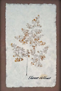 Maidenhair Fern / Chevuex de Venus Pressed in Paper Matted and framed