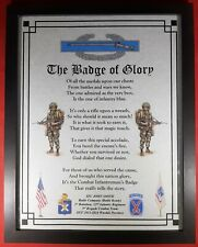 Mc-Nice: Army Combat Infantryman's Badge of Glory All Units Framed Personalized