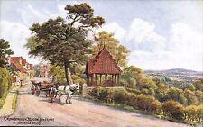 ARQ / Quinton # 1281. Crowborough Beacon from Frant Nr Tunbridge Wells.
