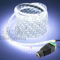 Super Cool White Waterproof 5M SMD 3528 600 Lights LED Flexible Strip Light 12V