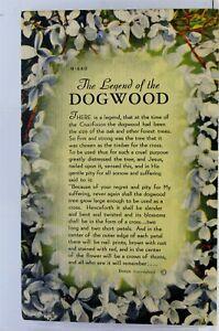 Scenic Legend of the Dogwood Postcard Old Vintage Card View Standard Souvenir PC