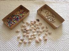 Vintage shells - Possibly Winkle, Nassa 0r Columbella & Coloured Umbonium shells