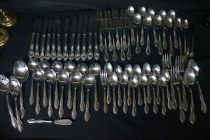 67 Pcs Oneida Community Stainless CHATELAINE Spoons, Knives, Forks