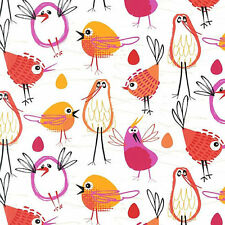 Robin in the Hood  Cotton Fabric Michael Miller Crazy Birds  Bfab