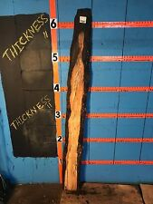 "#9785 1 1/4"" Thick black line spalted maple live edge slab"