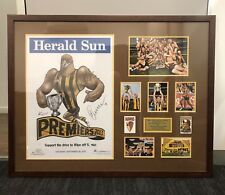 Signed And Framed Hawthorn 2013 GF Weg poster
