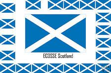 Assortiment lot de 25 autocollants Vinyle stickers drapeau ECOSSE Scotland