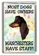"""Manchester Terrier Dog Fridge Magnet """"Most Dogs .... Manchesters Have Staff"""""""
