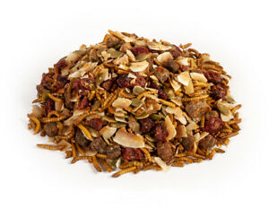 Crunchy Critters edible insects bugs a pint of Seed & fruit critter crunch