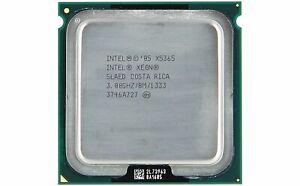 INTEL - SLAED - INTEL XEON CPU QC X5365 8M CACHE - 3.00 GHZ - 1333 MHZ FS