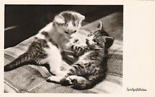 """RPPC of TWO KITTENS """"Playmates"""" CAT Postcard REAL PHOTO Photograph"""
