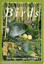 A Guide to Birds: How to Identify Birds in the Wild by Karel Hudec (hardback)