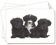 Yorkipoo Puppies Picture Placemats in Gift Box, AD-YP1P
