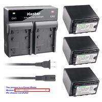 Kastar Battery AC Rapid Charger for Panasonic VW-VBD58 VW-VBD78 VW-VBD98 Battery