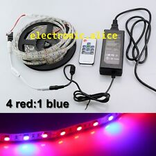 4red:1blue Full spectrum LED Plant Grow Greenhouse strip light IP20+remote+power