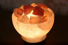 Himalayan Salt Lamp Natural Gift Light Crystal Pure Rock Fire Bowl With Switch
