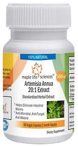 Artemisia Annua 20:1 Extract Capsules Artemisinin For intestinal worms