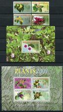 Papua Neuguinea 2009 Pflanzen Plants Blüten Blossoms 1382-85 Block 75-76 MNH