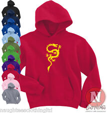 Chinese dragon martial arts kung fu Hoodie 8 colours Asian