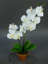 Orchidee Real Touch 60cm weiß im Topf GA künstliche Blumen Pflanzen Kunstblumen