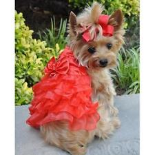 Dog Dress Red Satin & Lace & Matching Leash Doggie Design