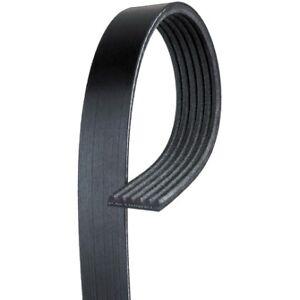 AC Delco 6K667 Serpentine Belt - Standard