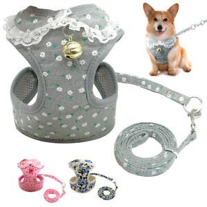 Small Dog Harness and Lead set Puppy Pet Dog Mesh Harness Vest Cat Walking Coat