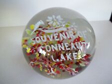 Conneaut Lake Souvenir Paperweight Floral Design Red and Yellow Pennsylvania