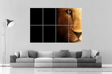 LION  Wall Art Poster Grand format A0 Large Print