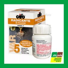 Cifo Rigenal P ormone radicante emissione radici talee Gr.100