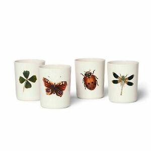 John Derian for Target 4pk 16oz Melamine Tumbler Set Insect Print Clover Beetle